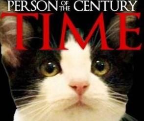 Katten Morris nominerad till borgmästare i Mexiko